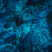 CDR_06102014_0063_Blue Cave